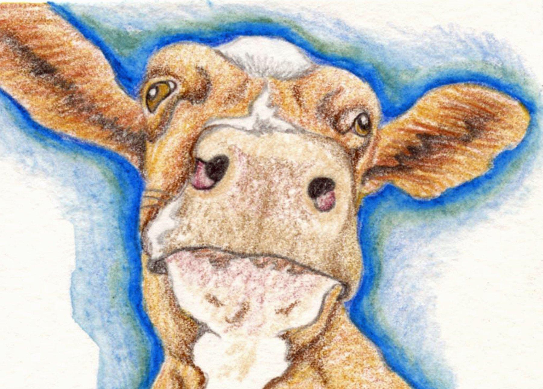 ACEO Original Trading card-free shipping-Brown Cow Farm Art-Carla Smale
