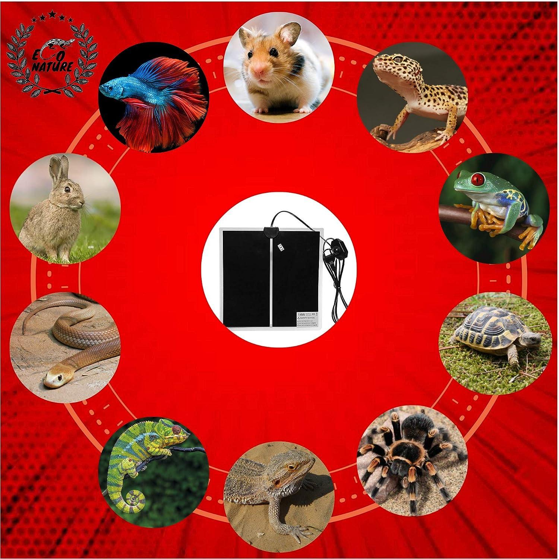 Eco Nature Termostato (110v-220v) y Manta Termica (14w), Eléctrica, Calefactora o de Calor para Incubadora Pecera o Terrario de Reptiles Pogona Anfibios ...