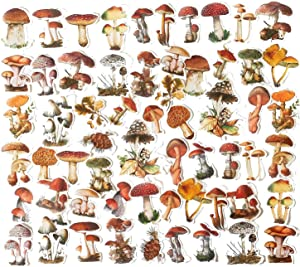 60PCS Mushroom Laptop Stickers Decals, Doraking DIY Mushroom Plants Decoration Stickers Decals for Windows, Refrigerator, Decoration (Mushroom Collection, 60PCS/Pack)