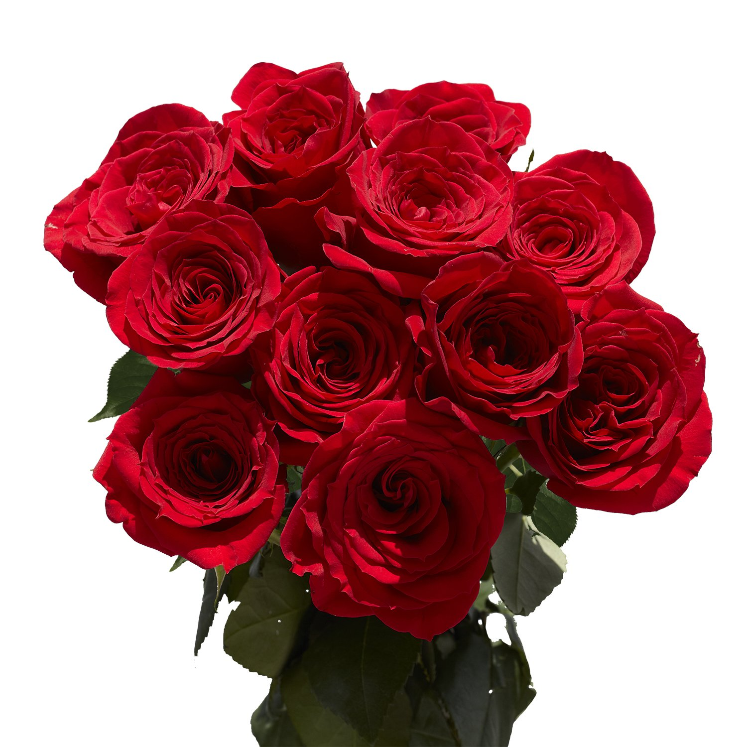 Amazon globalrose fresh 50 red roses long stem flower amazon globalrose fresh 50 red roses long stem flower delivery grocery gourmet food izmirmasajfo