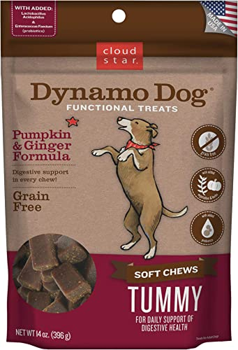 Cloud Star Dynamo Dog Tummy Treats Soft Chewy Probiotics Support for Dogs 14 oz. Pumpkin and Ginger