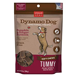 Cloud Star Dynamo Dog Tummy Treats – Soft & Chewy Probiotics Support for Dogs (14 oz. Pumpkin and Ginger)