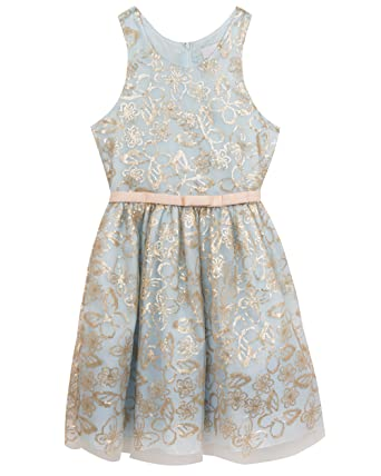 54c49e50232b Amazon.com: Rare Editions Girls' Little Sequined Embroidered Dress,  Blue/Gold, 4: Clothing