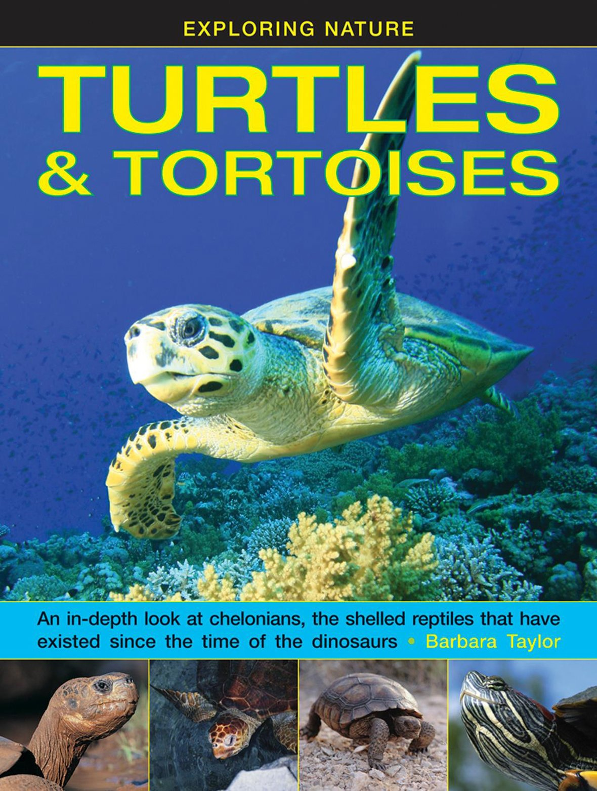 Read Online Exploring Nature: Turtles & Tortoises: An In-Depth Look At Chelonians, The Shelled Reptiles That Have Existed Since The Time Of The Dinosaurs pdf