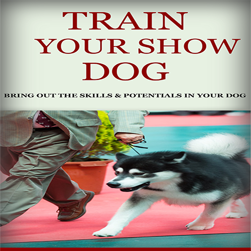 how to train a guide dog on your own