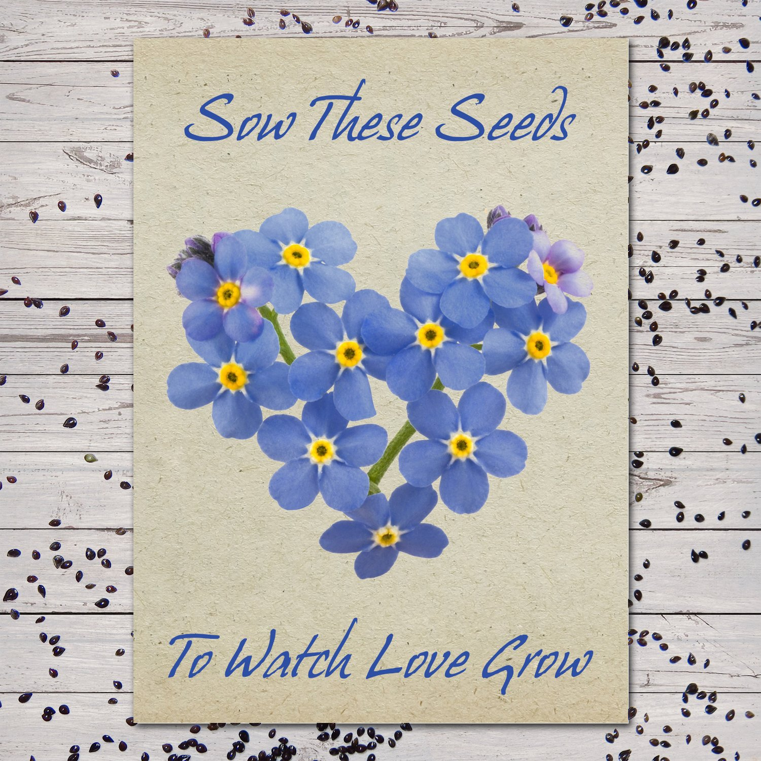 Set of 25 Individual Forget-Me-Not Seed Packets/Seed Favors (Watch Love Grow) by Seed Needs (Image #1)