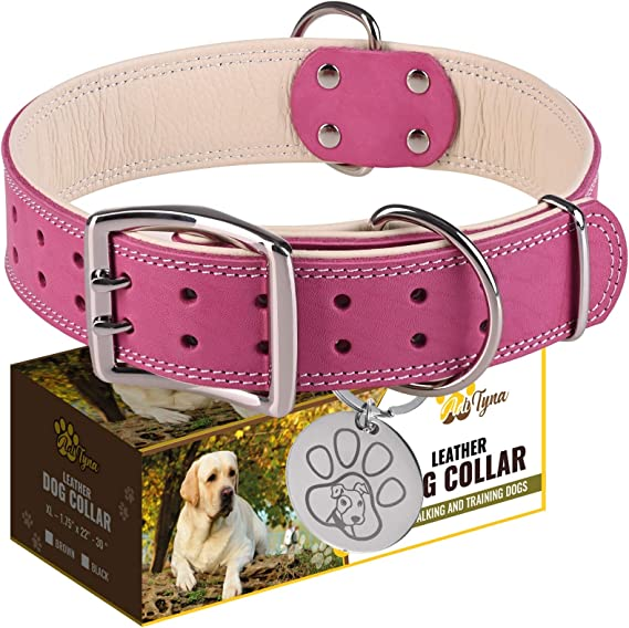 Adityna Leather Dog Collar