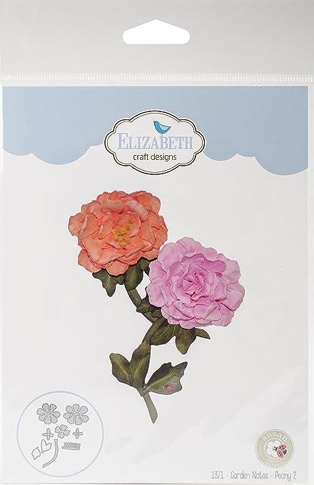 Amazon Com Elizabeth Craft Designs 1371 Metal Die Garden Notes Peony 2