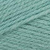 Sirdar/Hayfield Bonus Aran with Wool 400g - 725 Peppermint