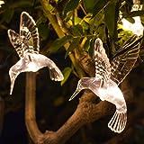 Lights4fun 10 Warm White LED Hummingbird Solar Garden Fairy Lights by