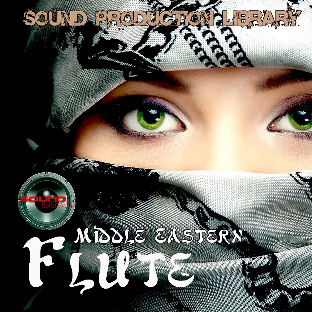 Middle Eastern Violin - unique Perfect Wave/Kontakt 24bit Multi-Layer Samples Library on DVD or download by SoundLoad (Image #3)