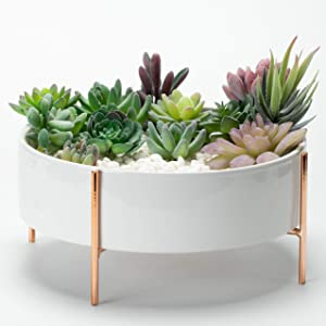 Kimisty 10 Inch Mid Century Round Succulent Planter Bowl with Rose Gold Stand, White Ceramic Pot with Drainage, Succulent Garden Shallow Pot, Tabletop Centerpiece, Includes Decorative White Pebbles