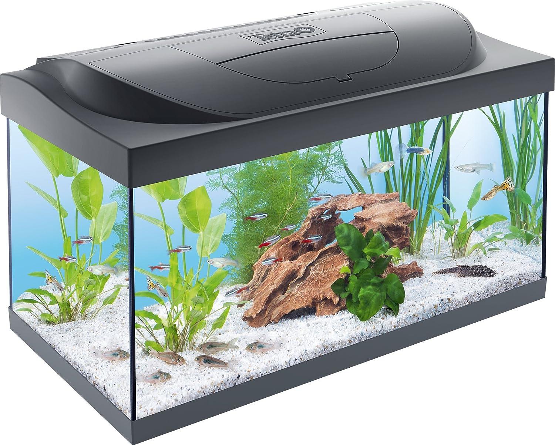 TETRA Starter Line - Aquarium LED Complet pour Débutants - 54L 4004218256996