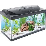 Tetra Starter Line Aquarium-Komplettset (mit LED-Beleuchtung, stabiles 54 Liter Einsteigerbecken mit Technik, Futter und Pflegemitteln)