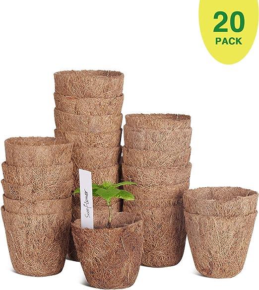 Paquete de 20 macetas de semillas de coco de 3 pulgadas, macetas ...