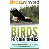 Birds for Beginners: Including 97 Birds of North America in Gorgeous Pictures