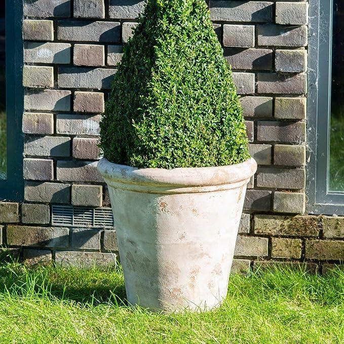 Gardenesque LTC - Maceta para jardín, Color marrón: Amazon ...
