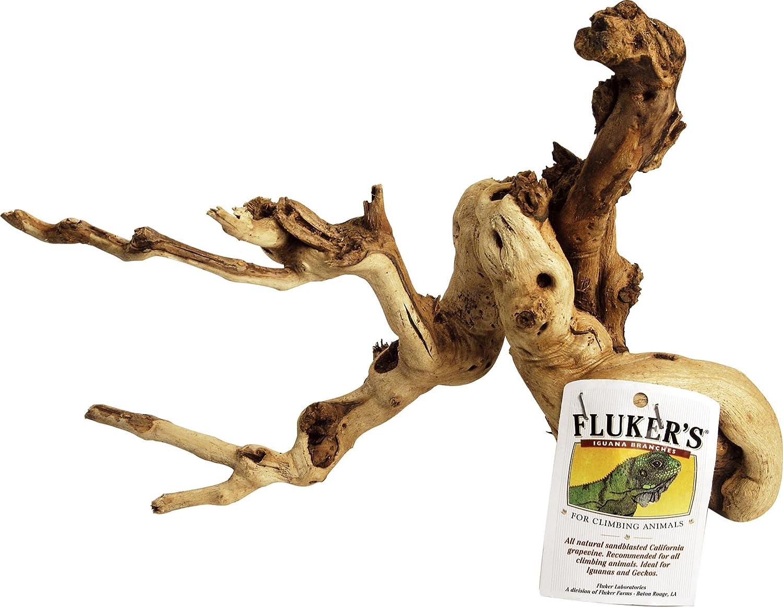 Fluker's Iguana Iguana by Branch by Fluker's Fluker's B0002DHOSQ, 9am:41fe4016 --- ijpba.info