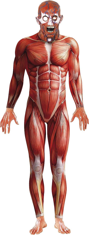 Juguete de anatomía disfraz cuerpo humano
