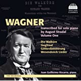 Wagner transcribed for solo piano by August Stradal, Vol. 1