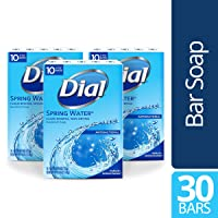 Deals on 30-Count Dial Antibacterial Bar Soap Spring Water