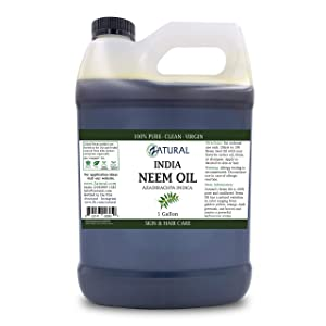 100% Pure Neem Oil - Undiluted Cold-Pressed, Uses for Hair, Skin, and Nails (128 Ounce)
