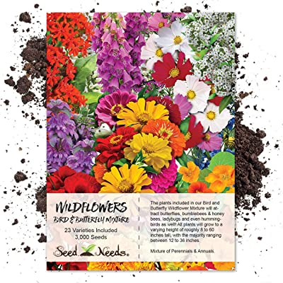 Seed Needs, Bird and Butterfly Wildflower Mixture (100% Pure Live Seed) 3, 000 Seeds : Flowering Plants : Garden & Outdoor