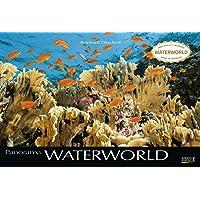 Waterworld 2020: Großer Foto-Wandkalender mit unterwasser-Bildern von Fischen. Edler schwarzer Hintergrund und Foliendeckblatt. PhotoArt Panorama Querformat: 58x39 cm.