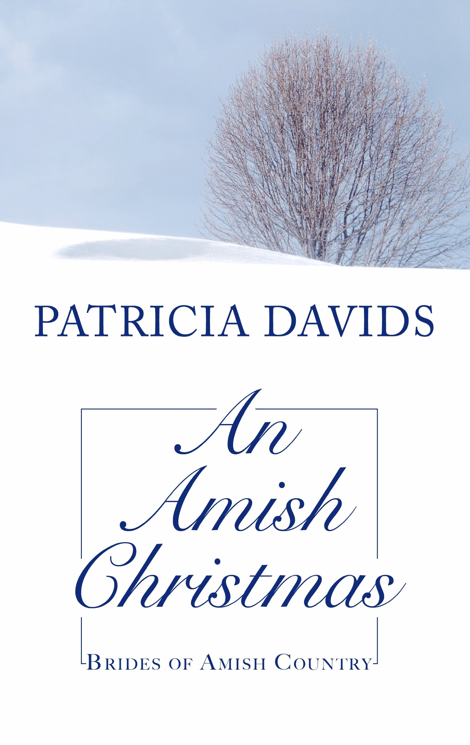 Read Online An Amish Christmas (Brides of Amish Country) pdf epub