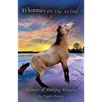 Winter of Sinking Waters: A Wilderness Horse Adventure (Whinnies on the Wind Book 5)