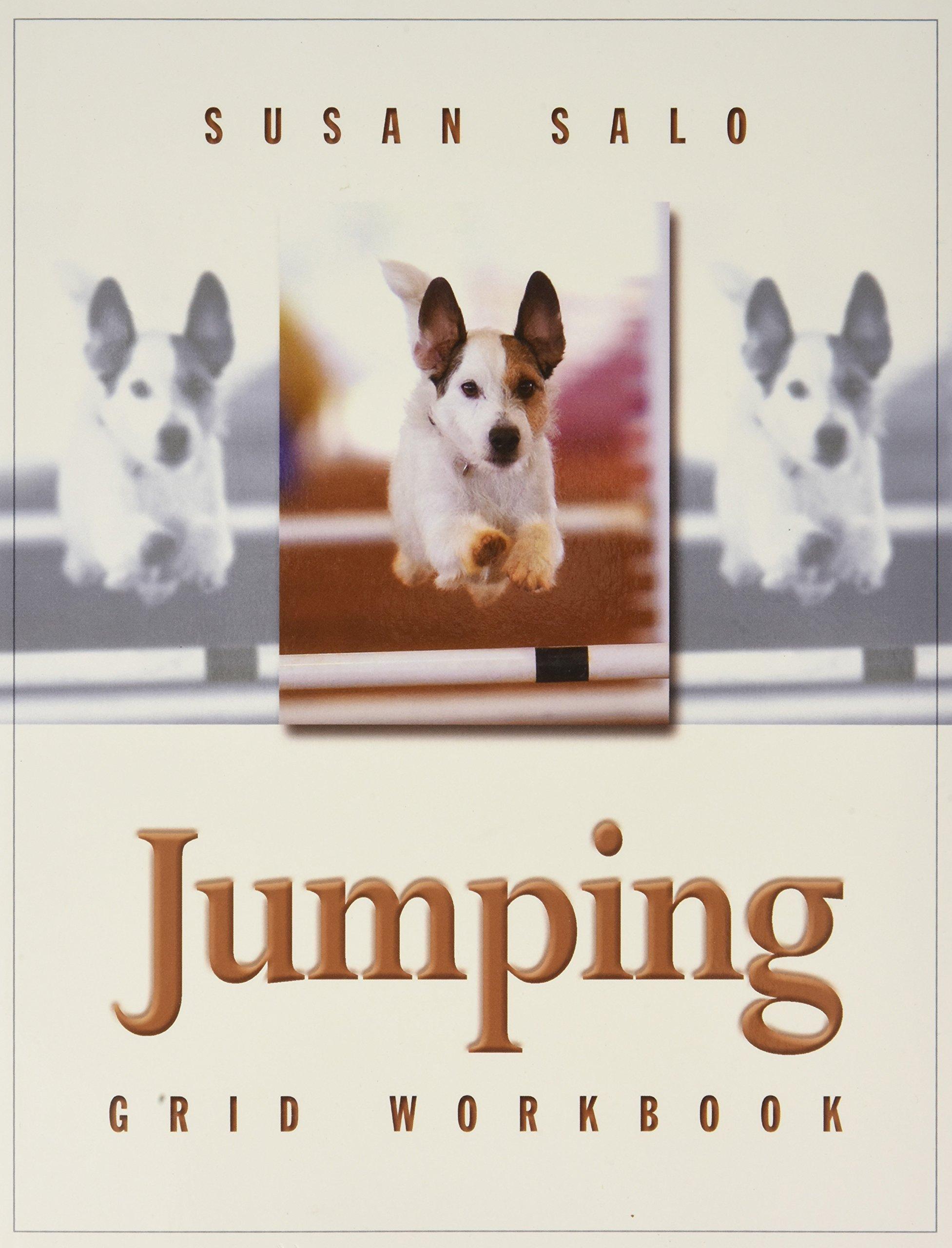 Jumping Grid Workbook ebook