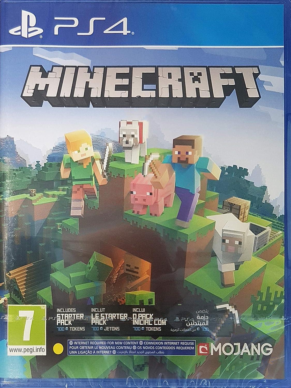 Amazon.com: Minecraft - Bedrock Edition PS12 : Video Games