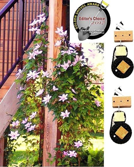 Amazon Com Scroll Trellis Garden Trellis For Narrow Spaces