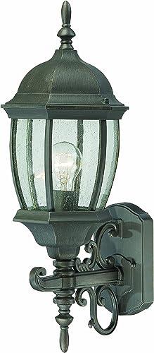 Thomas Lighting SL922563 Covington Outdoor Wall Lantern, Painted Bronze