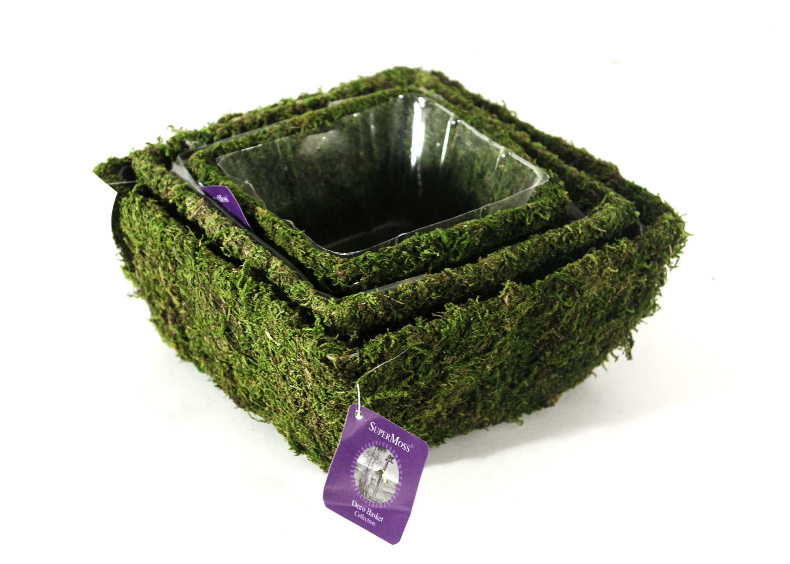 Super Moss (55040) Marin, Fresh Green, Set of 3 (S/M/L)