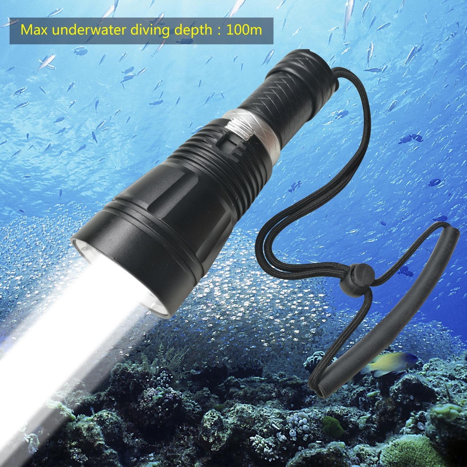 Goldengulf Professional 100M Depth Scuba Diving Flashlight Cree L2 LED 1800 Lumen Torch Waterproof Underwater Light Lamp Rechargeable 18650 Battery and Charger Included/Gift Box Package (160, 60) by Goldengulf