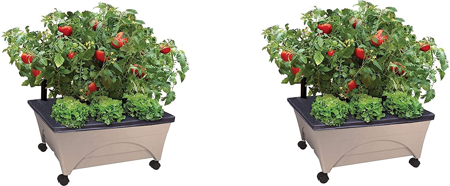 Emsco Group City Picker Raised Bed Grow Box – Self Watering and Improved Aeration – Mobile Unit with Casters - Sand (Pack of 2)