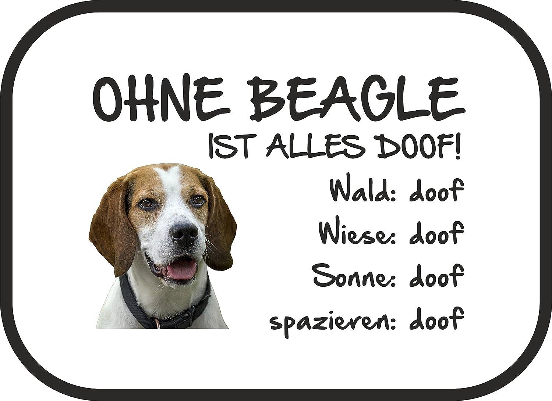 AdriLeo Autosonnenschutz Ohne Beagle ist Alles doof Befestigung 2er Set incl