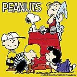 2018 Peanuts Wall Calendar
