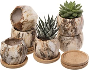 T4U 2.5 Inch Succulent Garden Pot with Bamboo Tray, Small Ceramic Marble Windowsill Plant Pot Cactus Herb Planter for Home and Office Decoration Birthday Wedding Christmas Gift Pack of 6
