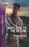 Navy SEAL to the Rescue: A Military Romantic Suspense Novel (Aegis Security)