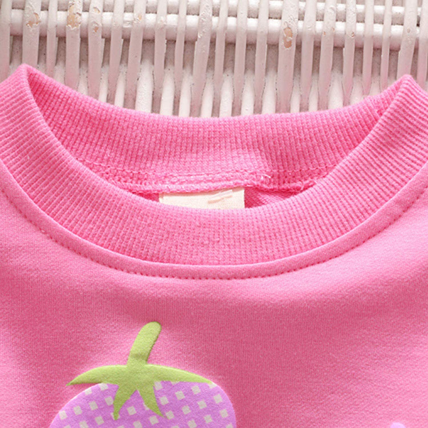 Baby Girls Long Sleeve Pullover Sweatshirts Lovely Blouse Tops Crew Neck Jacket