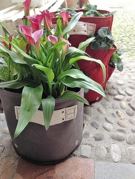 BloemBagz Classic planter 11 litros / 3 galones. Una maceta Textile para sus plantas Color: Sea Struck: Amazon.es: Jardín