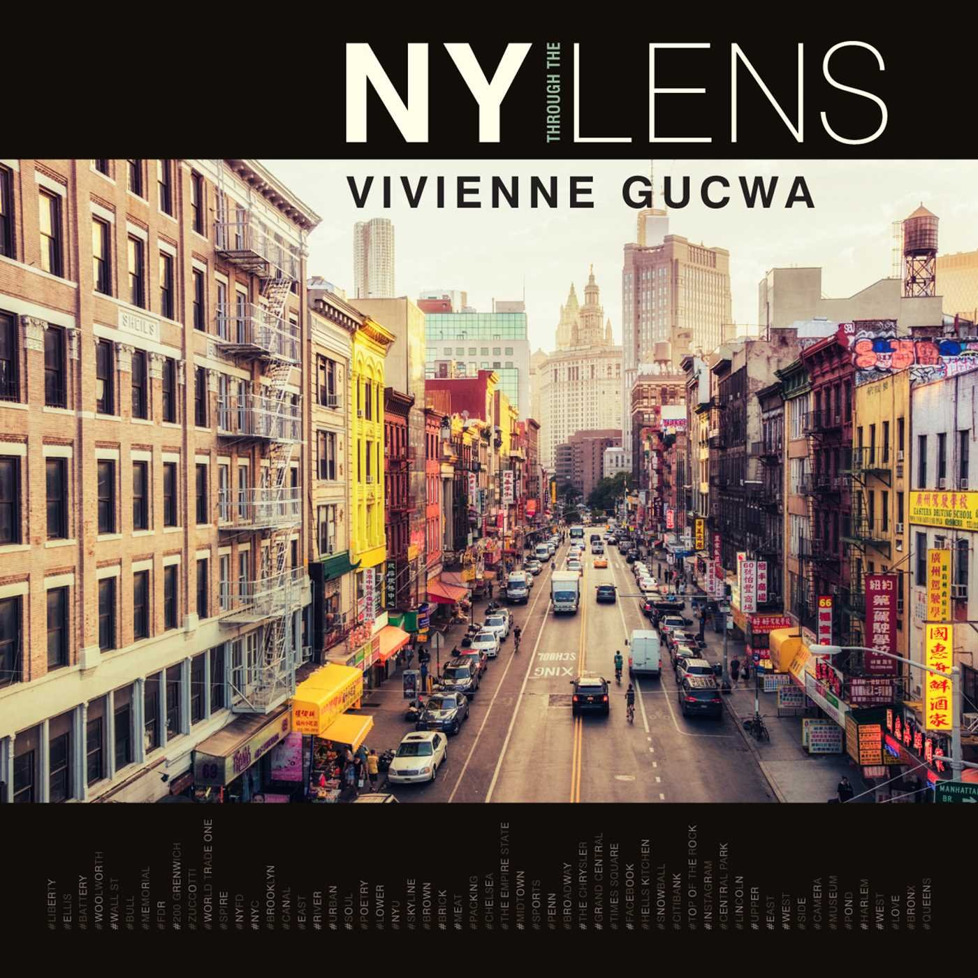 Amazon NY Through the Lens Vivienne Gucwa Books