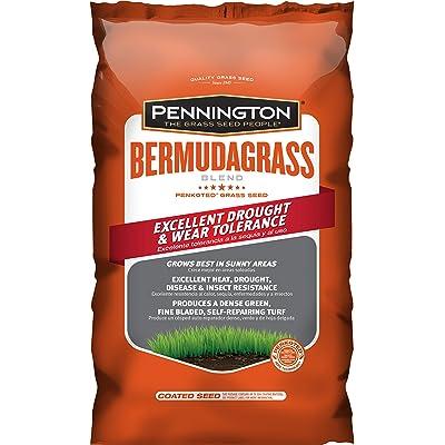 Pennington Bermuda Grass Seed - 5 lb : Garden & Outdoor
