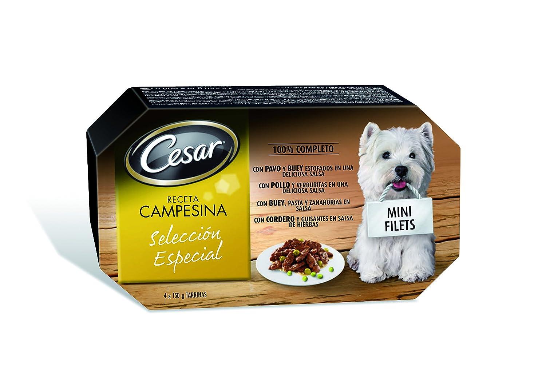 César Recetas Campesinas Selección Especial Tarrinas para Perros - 600 gr: Amazon.es: Amazon Pantry