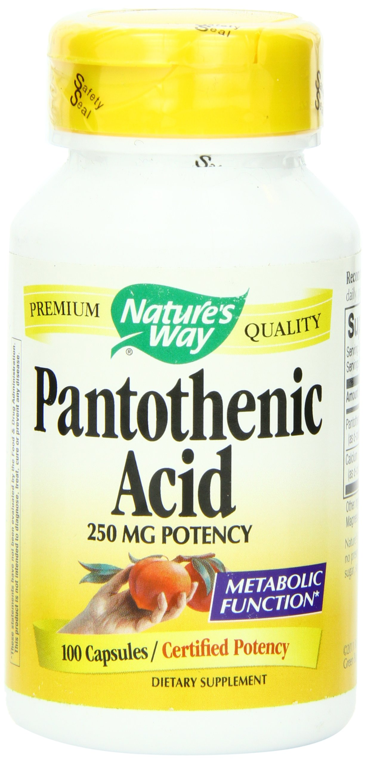 Nature's Way Pantothenic Acid 250 mg 100 caps