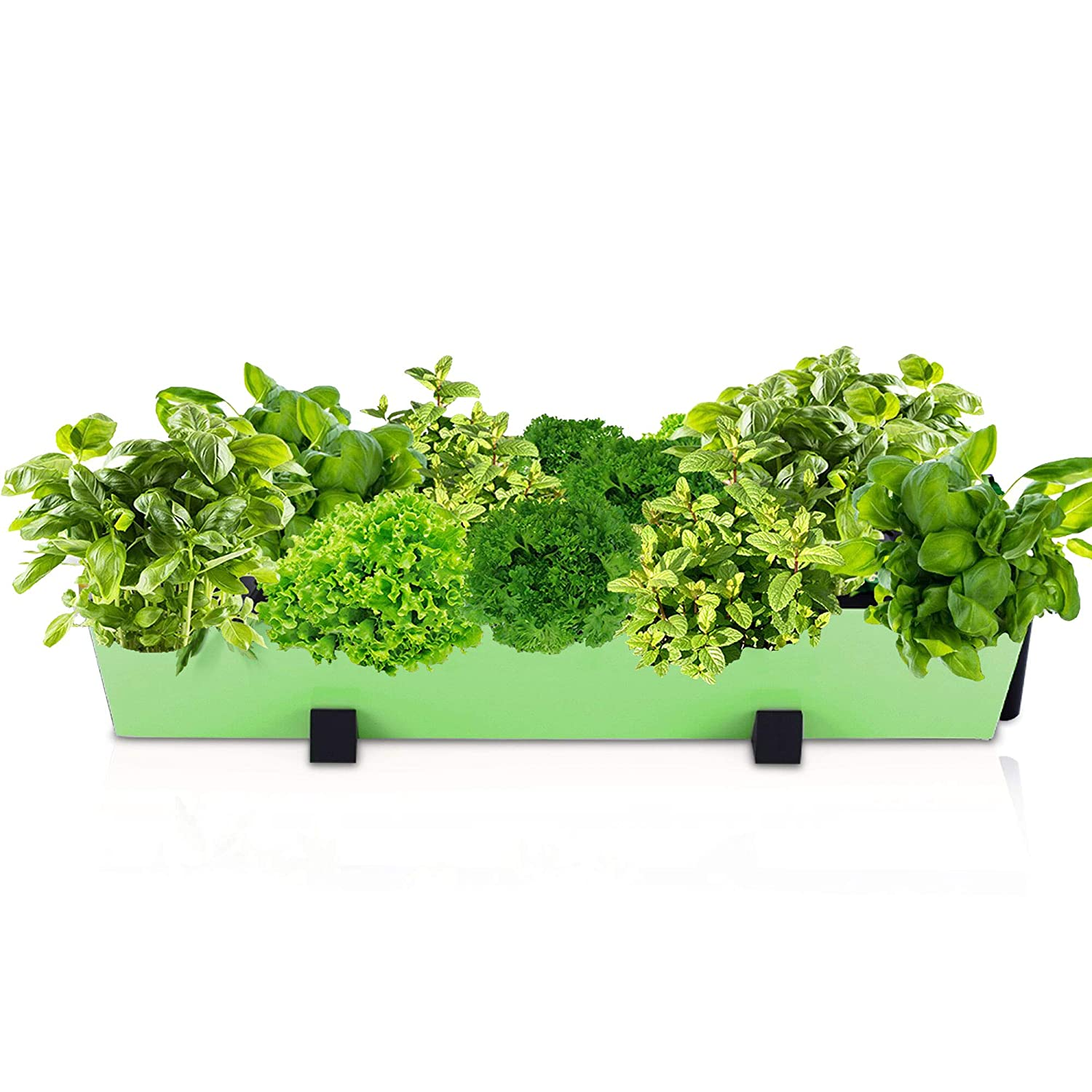 Indoor Herb Garden Planter Pot Flower Plant Pots Wall Decor Gardening Kit with Hanging Bracket – Plants Thrive with No Effort, Ideal for Busy Lifestyles – Standing Modern Succulent Pots 1 Lime