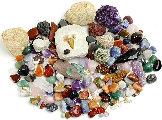 Dancing Bear Roca, minerales y fósiles Kit de recolección de ...