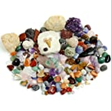 Rock, Mineral & Fossil Collection Activity Kit with ID Sheet & Rock book, plus Ammonite, Shark's Tooth in Matrix, Fossilized Poo, 2 Geodes & Arrowheads,(OVER 125 pcs and NO GRAVEL) Dancing Bear Brand